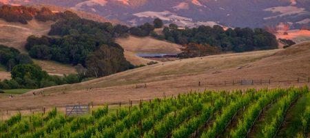 vista retreats sonoma county